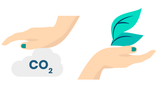 compensation_carbone